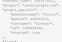 Tutorial: writing a Janus video call plugin in Lua